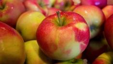 Günde Bir Elma