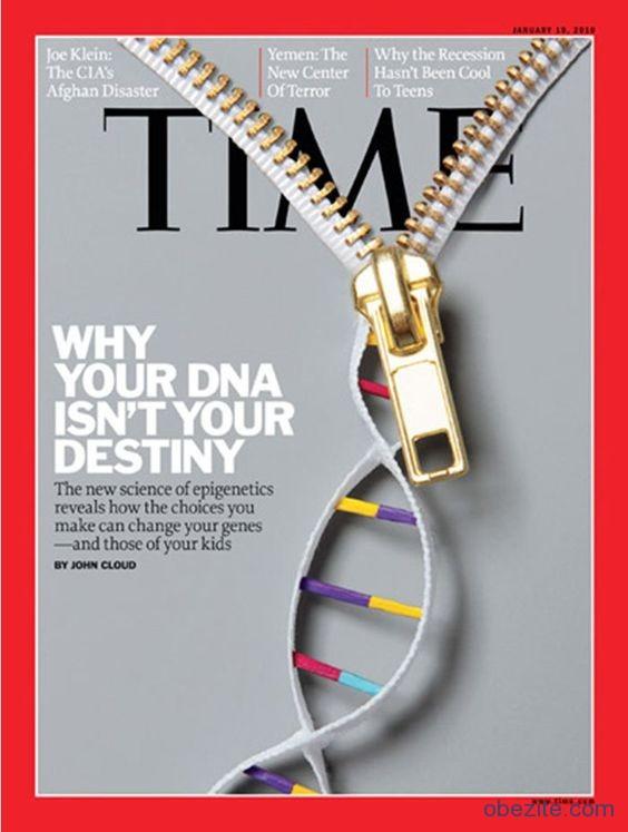 DNA kader değil